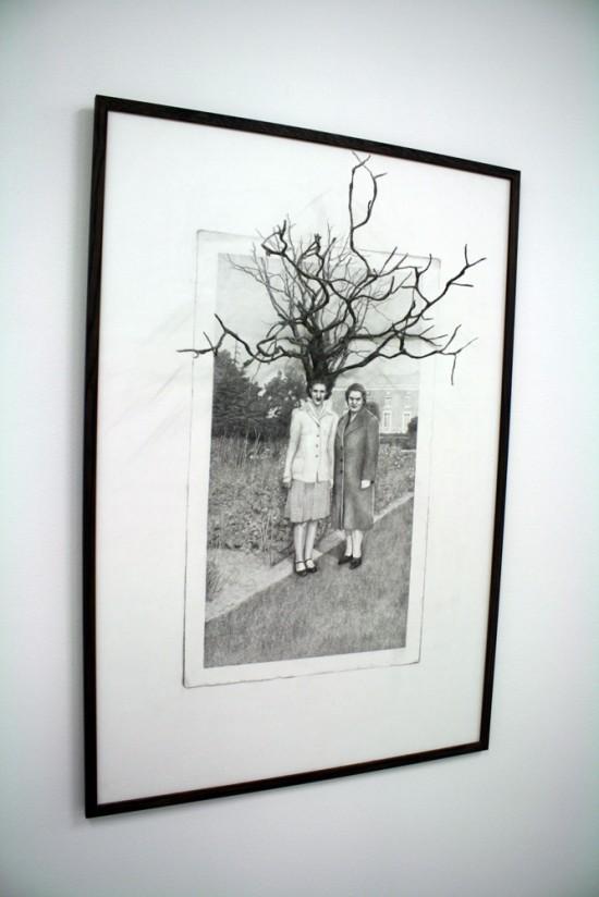 wild-tree-tegning-vanna